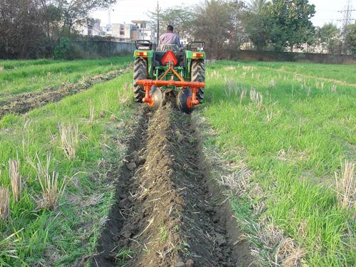 कृषि विभाग छवि-1